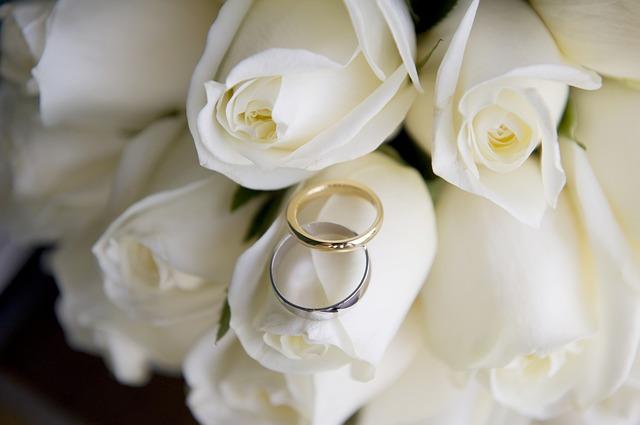 bílé růže, svatební prsteny